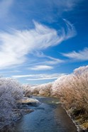 Manuherikia River and Hoar Frost, Ophir, Central Otago, South Island, New Zealand