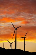 New Zealand, North Island, Te Apiti Wind Farm, Energy