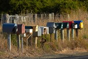 Rural Letterboxes, Otago Peninsula, Dunedin, South Island, New Zealand