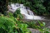 Rainforest waterfall, Serra da Bocaina NP, Parati, Brazil (horizontal)