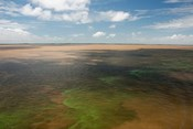 Brazil, Amazon River, Algae bloom