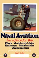 Naval Aviation has a Place for You
