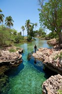 Alligator Hole, Black River Town, Jamaica, Caribbean