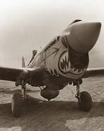 Vintage World War Two P-40 Warhawk