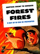Another Enemy - Forest Fires