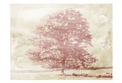 Marsala Tree
