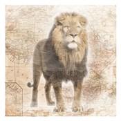 African  Animals - Lion