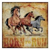 Born to Run 01