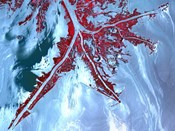 False Color Satellite View of the Very tip of the Mississippi River Delta