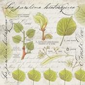 Botanical Jardins