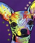Chihuahua II