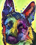 German Shepherd 1