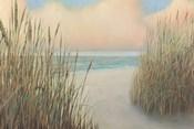 Beach Trail I
