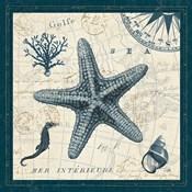 Ocean Life V