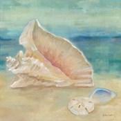 Horizon Shells III