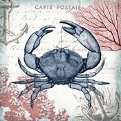 Coastal Sea Life II