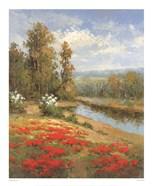 Poppy Vista I