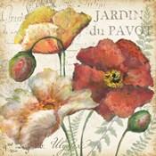 Spice Poppies Histoire Naturelle II
