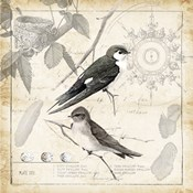 Botanical Birds Black Cream II