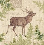 Woodland Trail I (Deer)