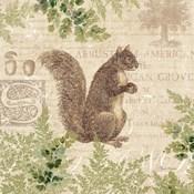 Woodland Trail III (Squirrel)