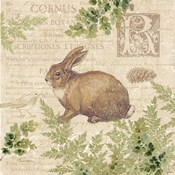 Woodland Trail IV (Rabbit)