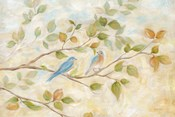 Blue Birds Branch