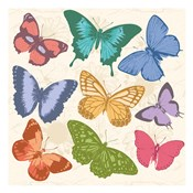 Colorful Butterflies Full