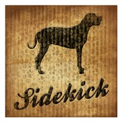 Sidekick (brown background)