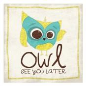 Owl See 2