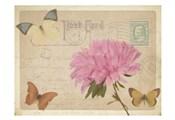 Vintage Butterfly Postcard III