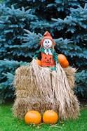 Wisconsin Autumn haystack, Halloween decorations