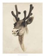 Watercolor Animal Study III