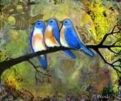 Three Little Bluebirds