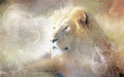 Lion Dust of Dreams