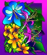 Kvilleflowers 8