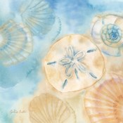 Watercolor Shells III
