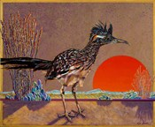 Roadrunner in the Evening