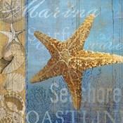 Starfish and sea