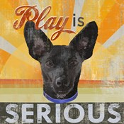 Dog Days - Liittle Black Pup
