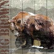 Open Season Bear