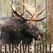 Open Season Moose
