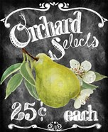 Orchard Selects
