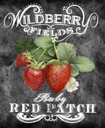 Wildberry Fields