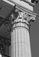 Corinthian Column III