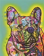 French Bulldog III