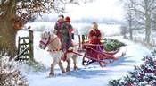 Pony Cart 2