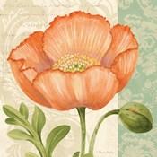Pastel Poppies II