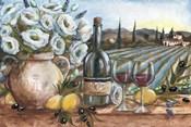 Provence Wine Landscape