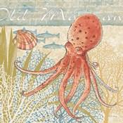 Oceana IV